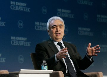 IEA Cautions Turkey on Energy Policy