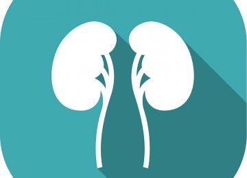 Kidney Stone Diseases