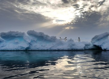 Antarctic Ozone Hole on the Mend