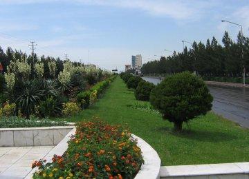 Grassing OK  in Tehran