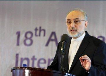 Salehi: Residual Sanctions Threaten JCPOA