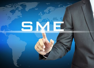 SMEs Share of Job Market