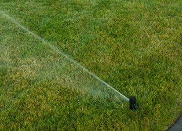 Green Spaces in Tehran Using Illegal Water