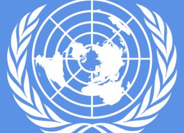 The Politics of UN Leadership
