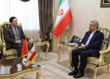 Iran Energy Minister, China Envoy Discuss Collaboration in Water, Power Sectors