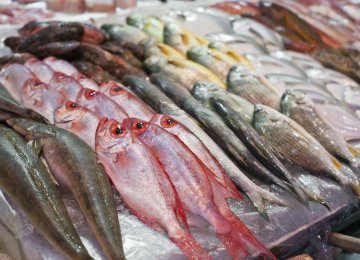 Seafood Exports Earn $50m in 2 Months