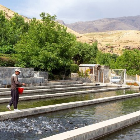 Construction of Iran's Biggest Super-Intensive Fish Farm Begins