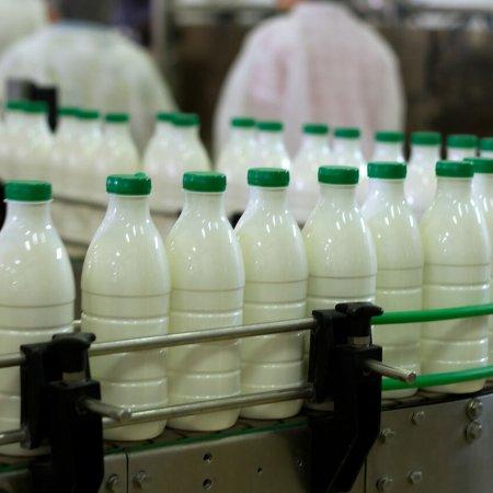 Iranian Dairy Consumption Below Global Average