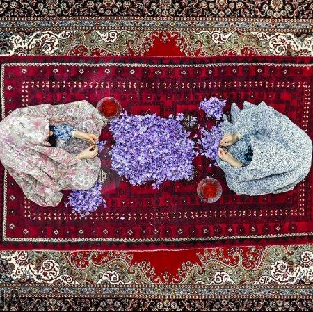 Iran's Q1 Saffron Exports at $38m