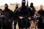 50 Saudi  Members of IS Nabbed in Iraq