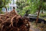 Wind Storm Kills Eight in Romania