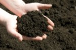 Forest, Rangeland Soil Export Illegal