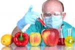 Import of Transgenic  Crops Gets Go-Ahead
