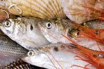 Seafood Output Target: 1.6m Tons p.a. by 2022