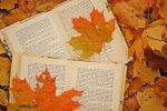 Book House Autumn Sale Opens