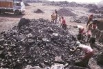 India Coal Import Up