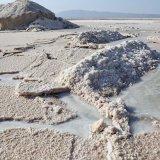 Concern Over Loss of Qom Salt Lake