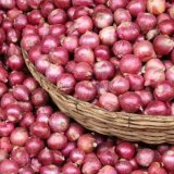Onion Exports Earn $22m  in 4 Months