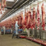 Q1 Red Meat Output at 98,800 tons