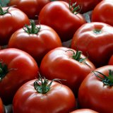 Tomato Exports Earn $112m  in 5 Months