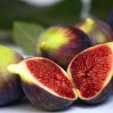 Fig Exports at 11,000 Tons