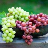 Grape Exports Top 107K Tons