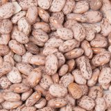 Pinto Bean Imports Top $53m in 11 Months