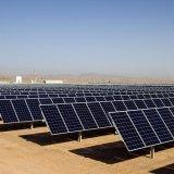 Renewable Energy Capacity Set to Exceed 1 Gigawatt