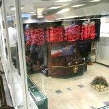 TSE Prospects Brighten  Despite Economic Downturn