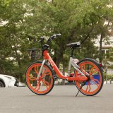 Smart Bike-Sharing System for Tehran