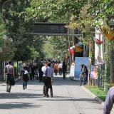 Stage Reading Festival at Amir Kabir University