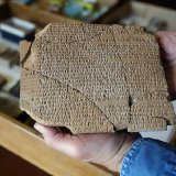 The Achaemenid inscriptions contain accounts of financial affairs such as trade of goods and wages.
