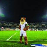 Cheetah Back on Team Melli Apparel