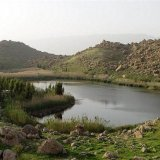 Call for Action to Save  Bisheh-Dalan Wetland