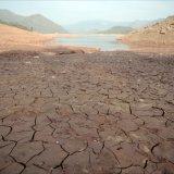 Sever Desertification Looms