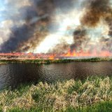 Iran to Help Extinguish Wetland Fire on Iraqi Soil