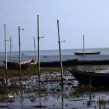 Gulf of Gorgan  Dying in Silence