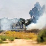 Push for Iraq's Serious Engagement in Firefighting at Border Wetland