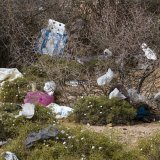 Plastic Waste, a Growing Menace