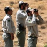 Imprisoned Park Rangers  to Be Released