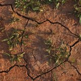 Environment Paying Price  for Imprudent Growth