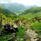 Modifications of Protected Areas Will Promote Rural Development, Investment