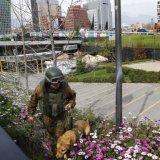 Bomb Blast Hits Chile, Gov't Blames Terrorists