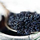 Caviar Exports Improve