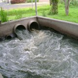 Wastewater-Irrigated Farms