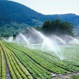 Agro Sector Will Get Less Water