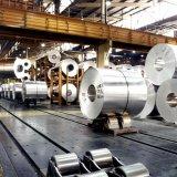 Aluminum Factory Under Construction