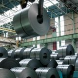 Steel Industry  Expected to Grow