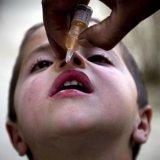 WHO Lauds Iran Polio Success
