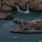 Ducklings Smell Trouble at Shushtar Waterfalls